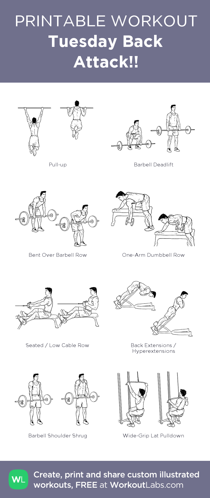gym program to build muscle pdf