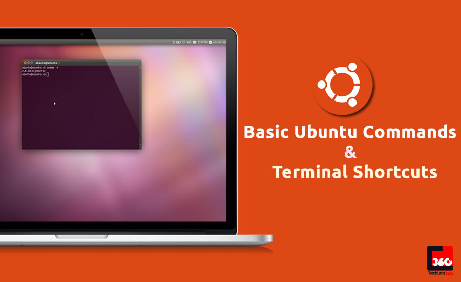 linux beginner guide terminal